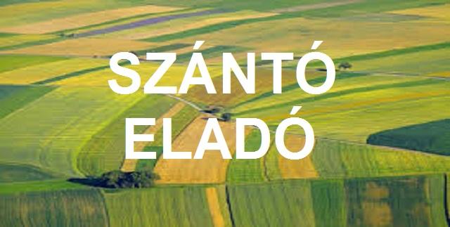 Kiskunhalas, Mezőgazdasági ingatlan Extrák: